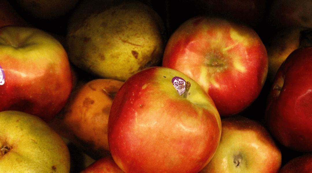 Hvad er gevinsten ved at du bruger din biospand?